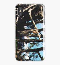 Monterey Brush... iPhone Case