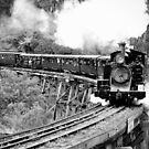 Puffing Billy  by James Millward