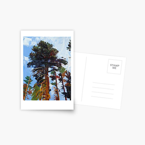 Big Pine Postcard