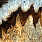 """""""Seismic"""" by waddleudo"""