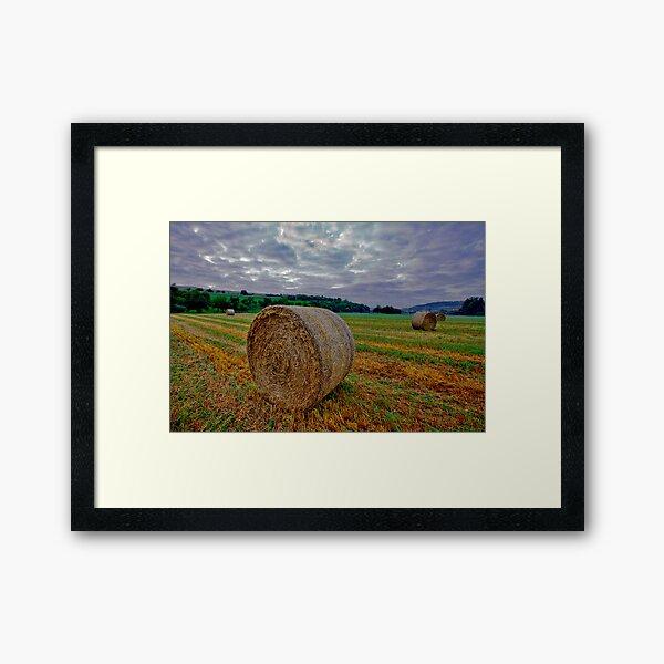 Hay Bails at Sunrise Framed Art Print