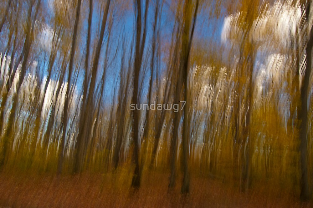 Autumnal Spirits by sundawg7