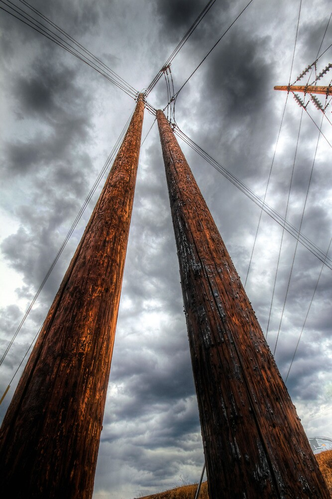 Crossed Lines by Bob Larson
