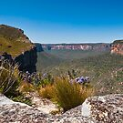 View from Pierces Lookout looking East by Chris  Randall