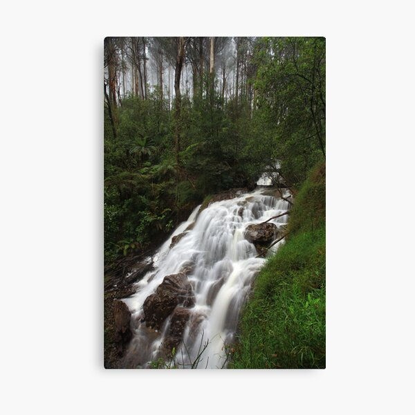 Sylvia Creek Falls Canvas Print