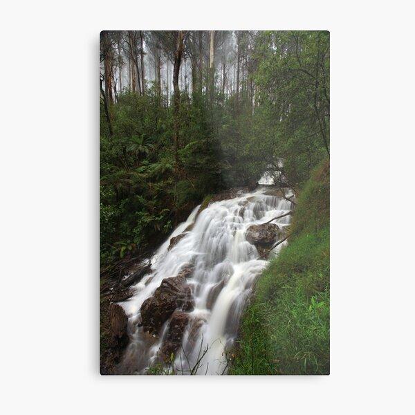 Sylvia Creek Falls Metal Print