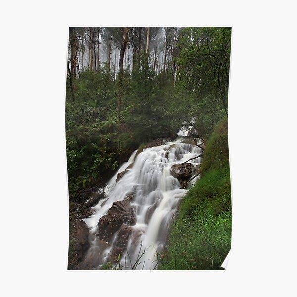 Sylvia Creek Falls Poster