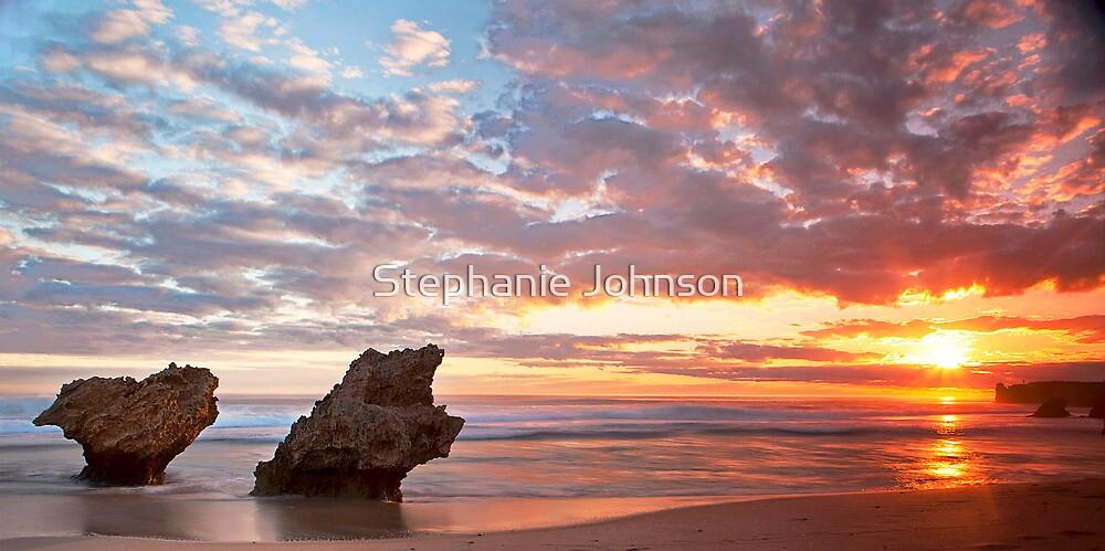 Winter light by Stephanie Johnson
