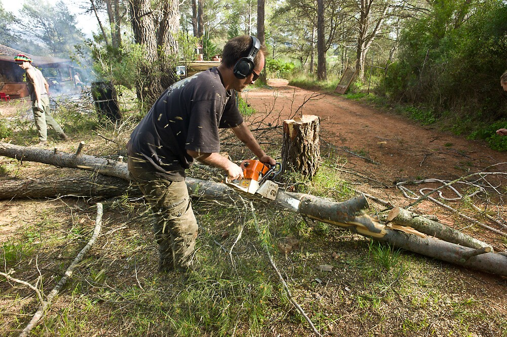 Chainsawing by benjy