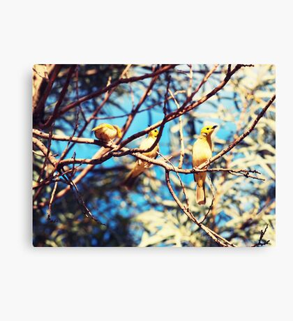 Family of 3 Canvas Print