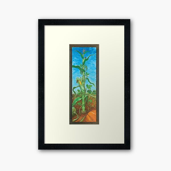 Three Sisters: Corn, Beans & Squash Framed Art Print