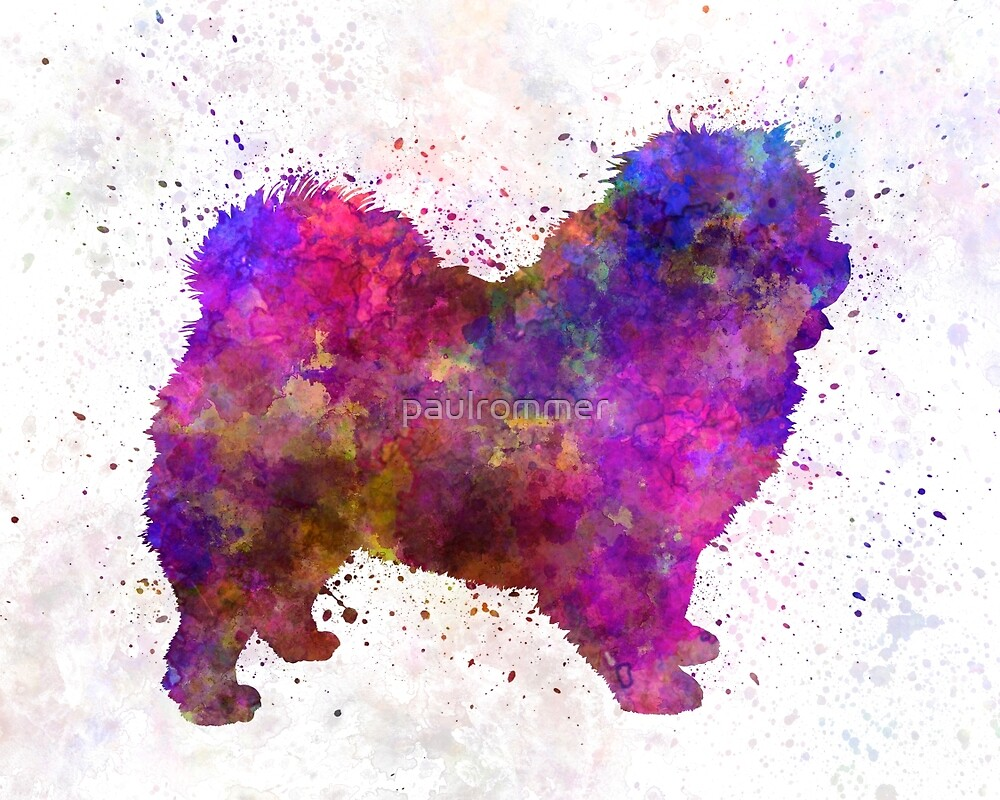 Chow-chow in watercolor by paulrommer