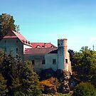 Waldenfels castle IV by Patrick Jobst