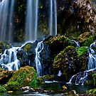 Falling Creek Falls by Dave Parrish