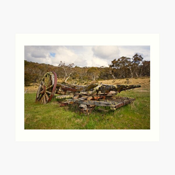 Old Cart, Coolamine Homestead, Kosciuszko National Park Art Print