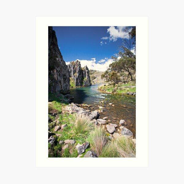 Caves Creek, Kosciuszko National Park Art Print