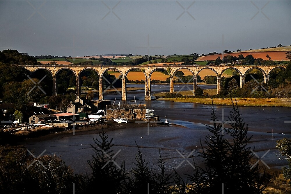 St Germans Viaduct by Country  Pursuits