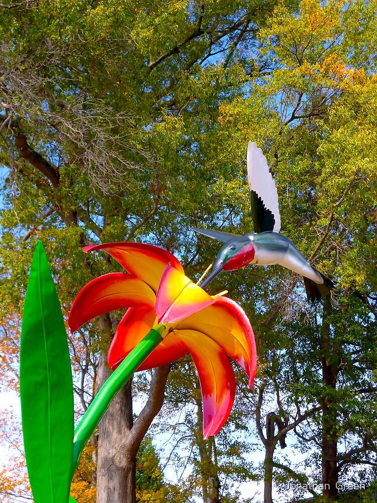 Happy Hummingbird By Jonathan Green by Jonathan  Green