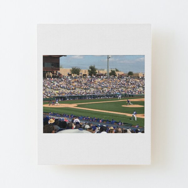 2020 Cubs Spring Training Wood Mounted Print