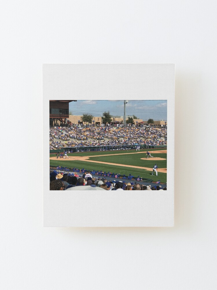 Alternate view of 2020 Cubs Spring Training Mounted Print