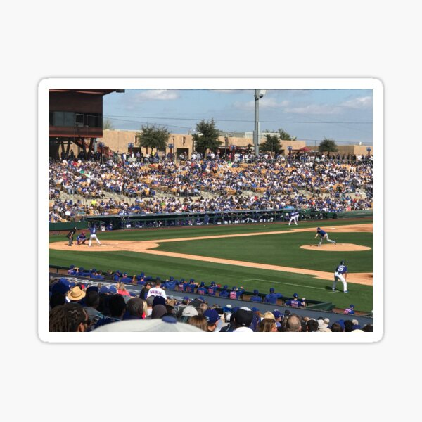 2020 Cubs Spring Training Sticker