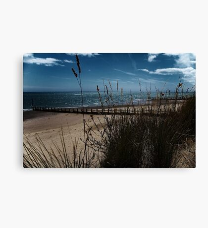 Grass & Groynes Canvas Print