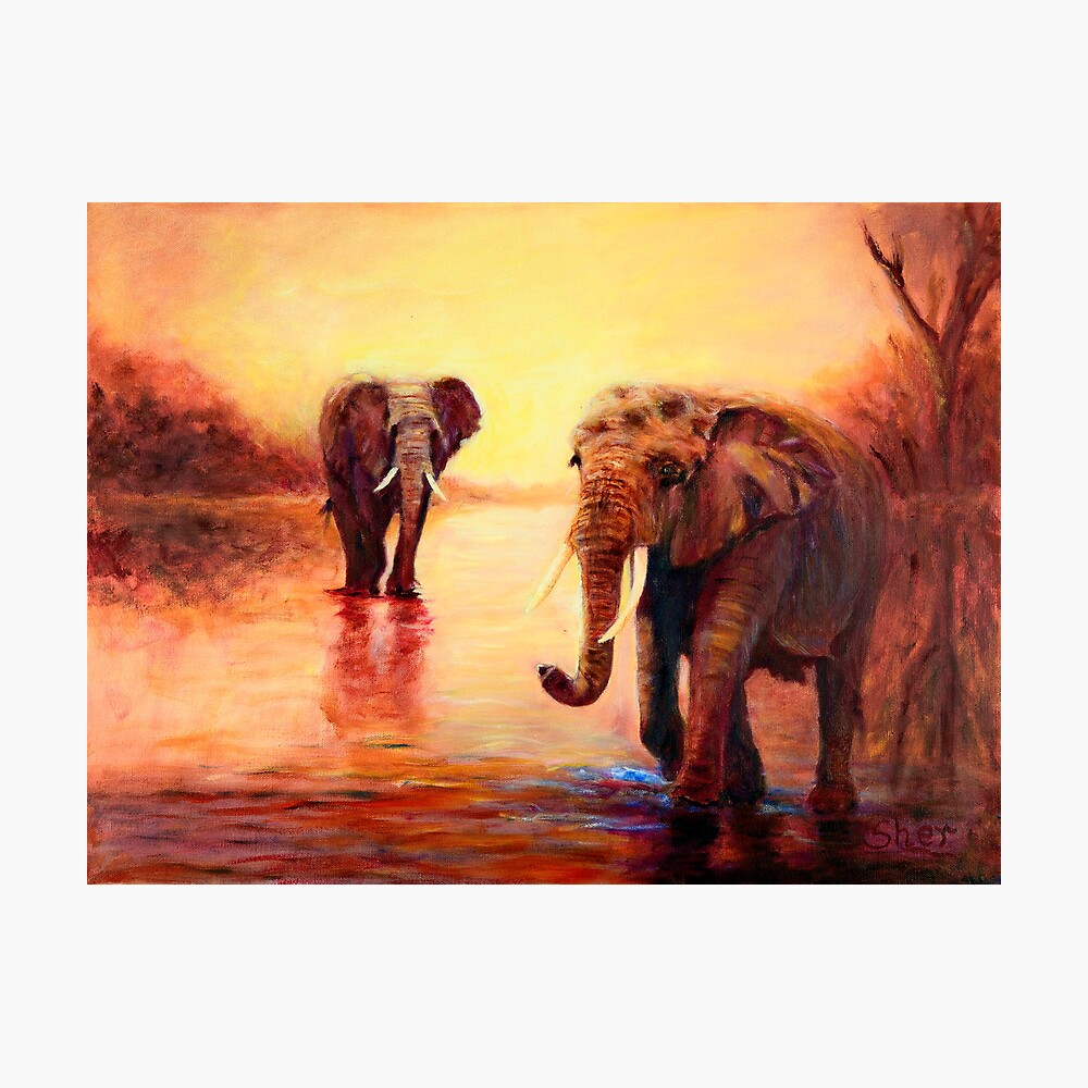 African Elephants at Sunset Photographic Print