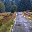 Merryman Road in October by TerrillWelch