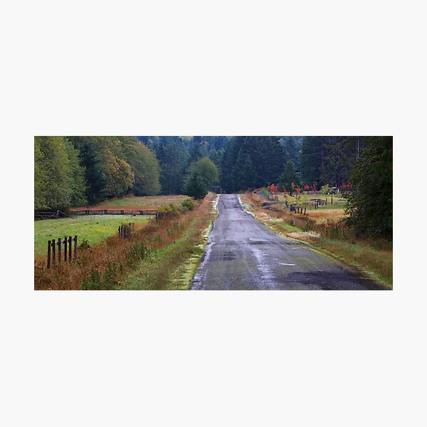 Merryman Road in October Photographic Print