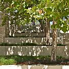 Garden Steps by Helen Vercoe