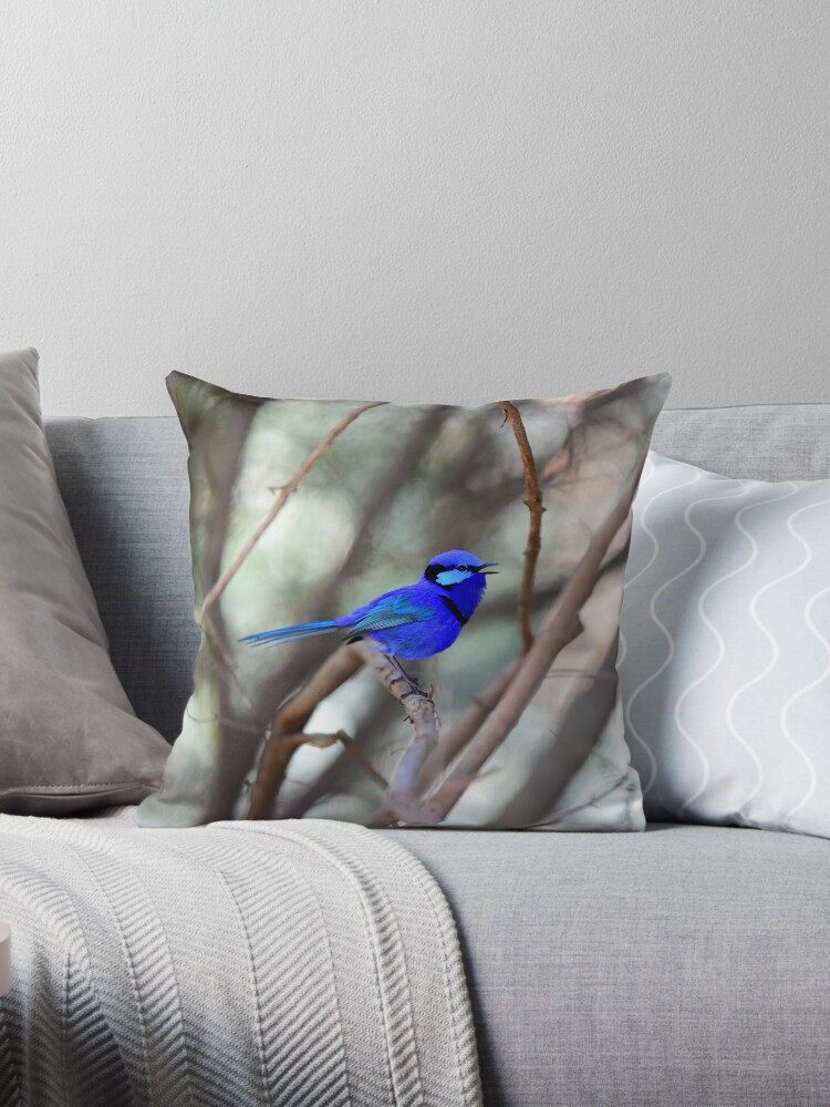 Splendid Blue Fairy Wren Singing by Monika-J-Wright