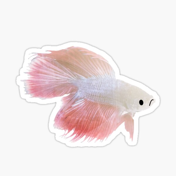 Sad Fish Sticker