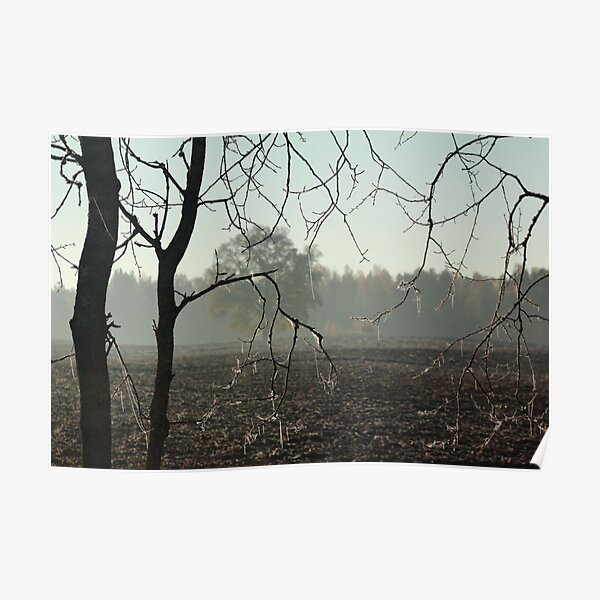 First frost on tree branches Poster