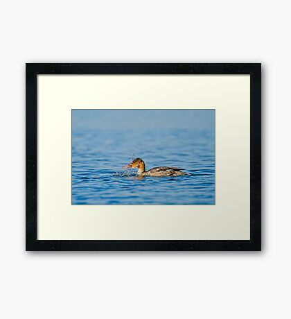 Fish On! Framed Print