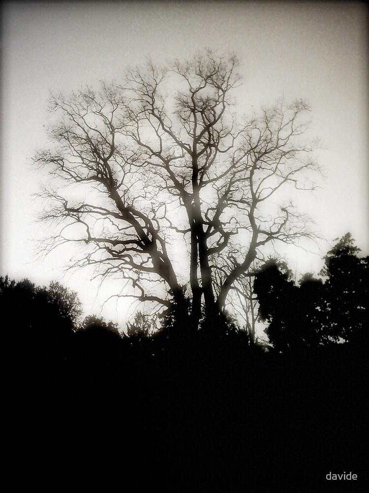 Cold Memories - alternate version by Davide Montellanico