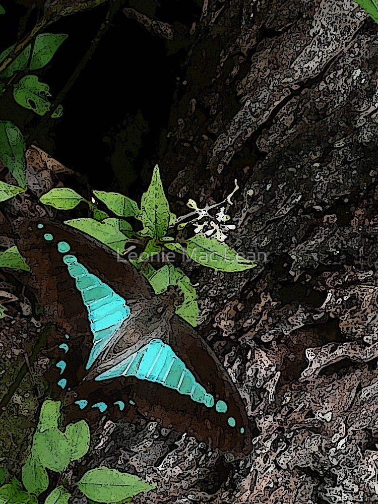 Rainforest Butterfly by yallmia