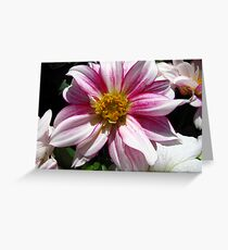 Flowers for Breast Cancer  Greeting Card