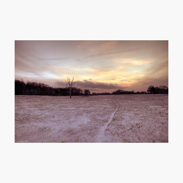 snow way Photographic Print