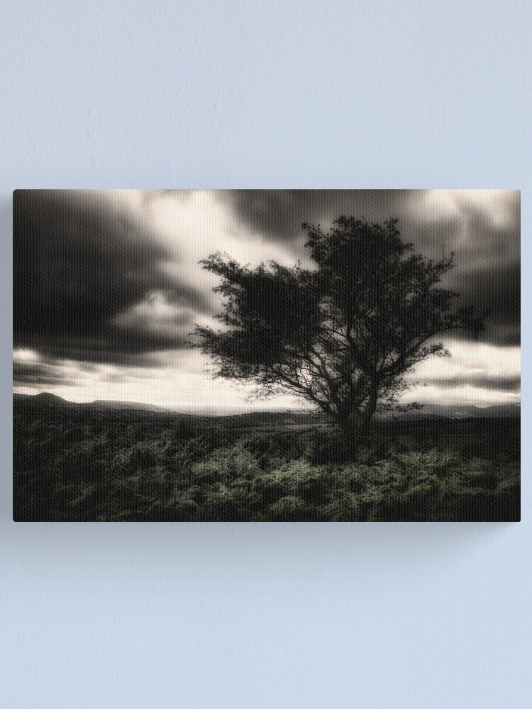 Alternate view of once upon a hill Canvas Print