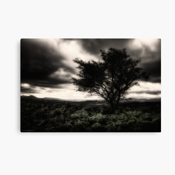 once upon a hill Canvas Print