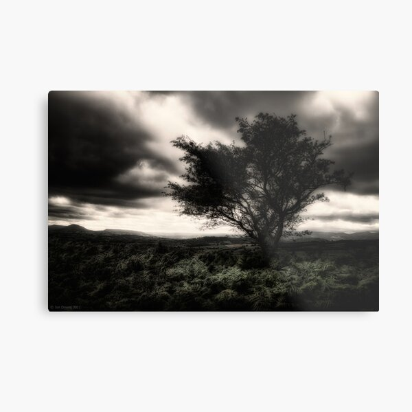 once upon a hill Metal Print