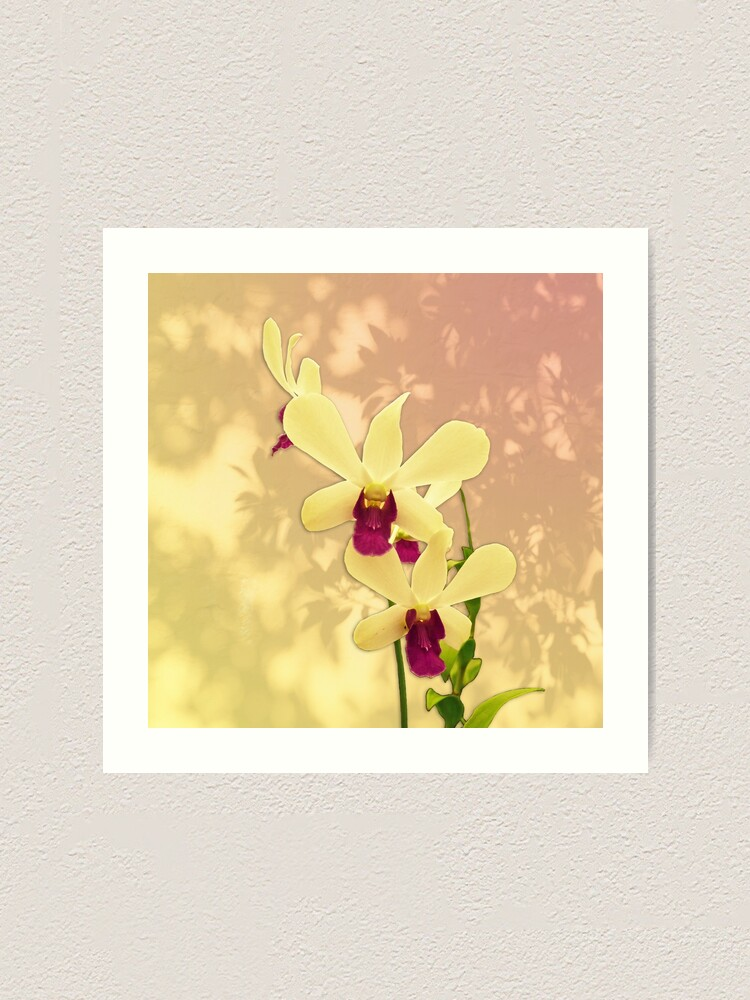 Alternate view of Purple Exotic Orchid with Shadows Art Print