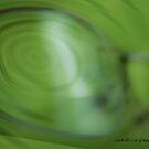 Spinner Vision © Vicki Ferrari Photography by Vicki Ferrari