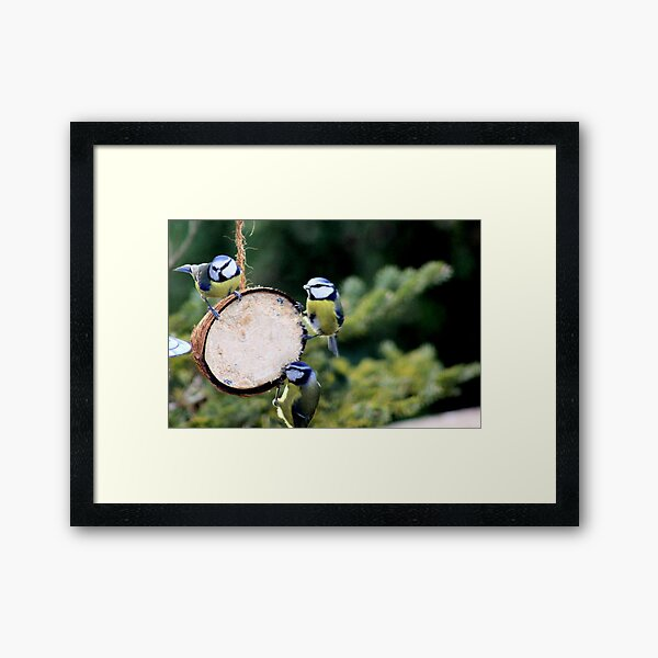 This is new Framed Art Print