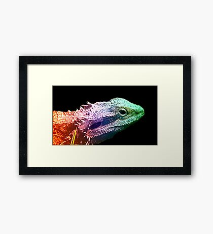Bearded Dragon -  Rainbow Dragon Framed Print