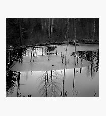 opaque reflection Photographic Print