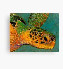 Turtle #2 Canvas Print