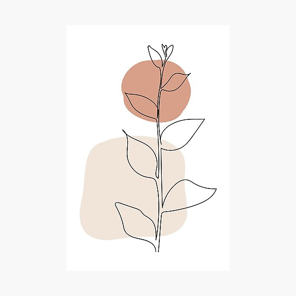 Sun and Leaves - Modern Minimal Line Drawing Botanical Line Art Mid-century Modern Minimal Decor Photographic Print