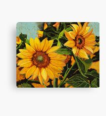 Looking for the Sun Canvas Print