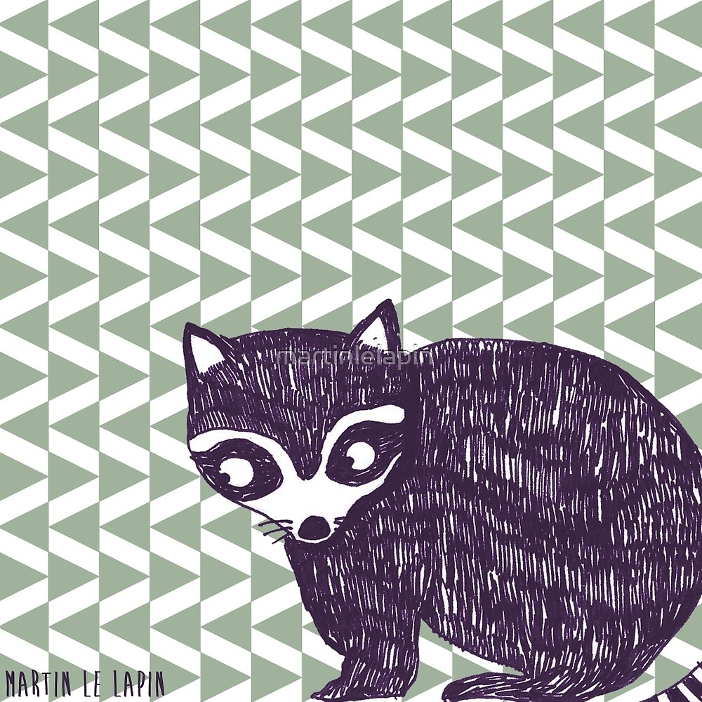Pointy Racoon  by martinlelapin